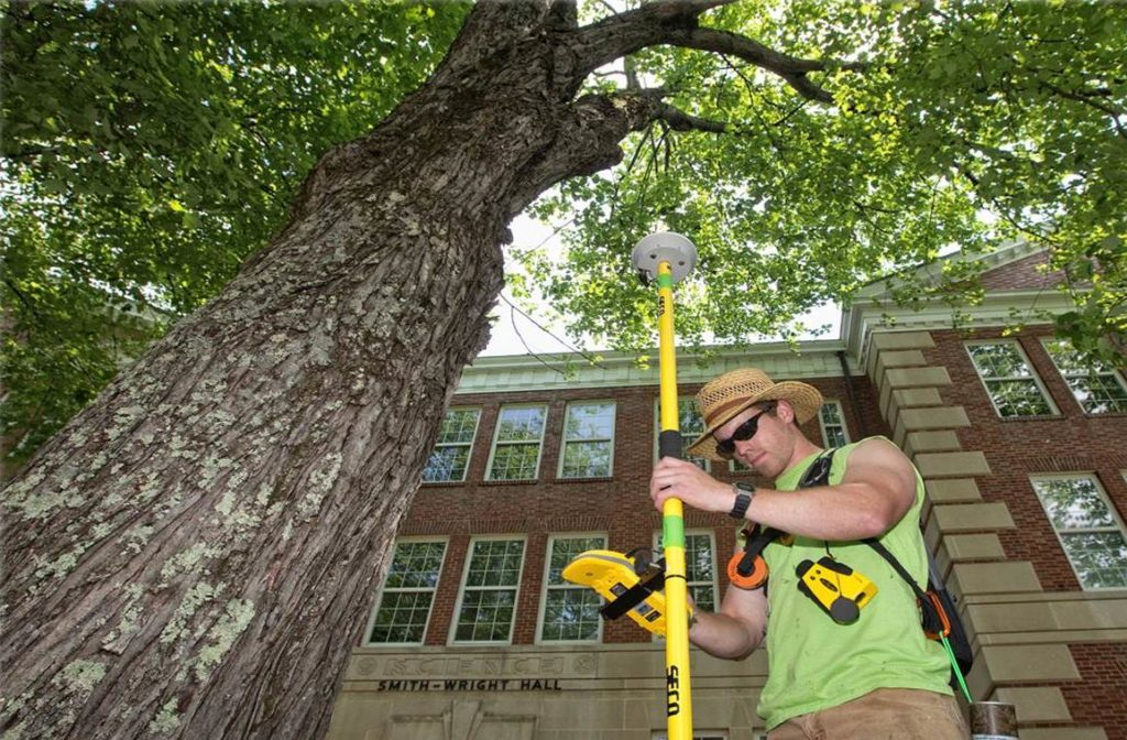 Arborist Consultations-Lexington Tree Trimming and Stump Grinding Services-We Offer Tree Trimming Services, Tree Removal, Tree Pruning, Tree Cutting, Residential and Commercial Tree Trimming Services, Storm Damage, Emergency Tree Removal, Land Clearing, Tree Companies, Tree Care Service, Stump Grinding, and we're the Best Tree Trimming Company Near You Guaranteed!