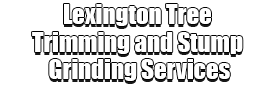 Lexington Tree Trimming and Stump Grinding Services Logo-We Offer Tree Trimming Services, Tree Removal, Tree Pruning, Tree Cutting, Residential and Commercial Tree Trimming Services, Storm Damage, Emergency Tree Removal, Land Clearing, Tree Companies, Tree Care Service, Stump Grinding, and we're the Best Tree Trimming Company Near You Guaranteed!