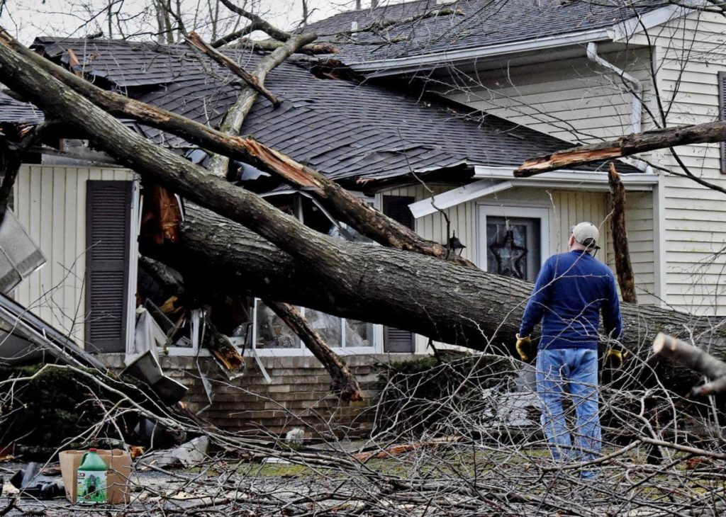 Storm Damage-Lexington Tree Trimming and Stump Grinding Services-We Offer Tree Trimming Services, Tree Removal, Tree Pruning, Tree Cutting, Residential and Commercial Tree Trimming Services, Storm Damage, Emergency Tree Removal, Land Clearing, Tree Companies, Tree Care Service, Stump Grinding, and we're the Best Tree Trimming Company Near You Guaranteed!