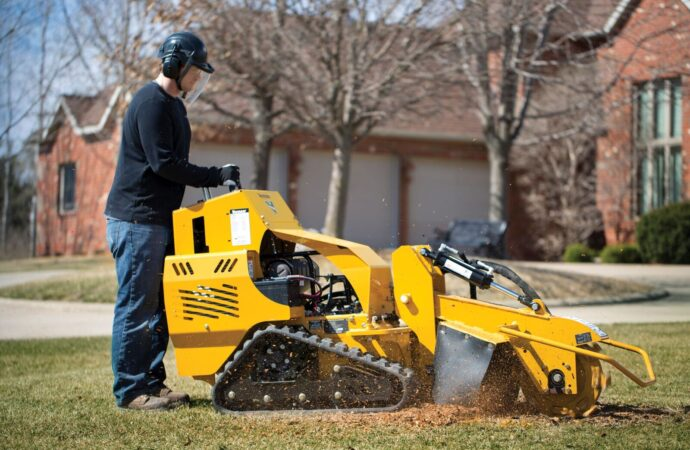 Paris-Lexington Tree Trimming and Stump Grinding Services-We Offer Tree Trimming Services, Tree Removal, Tree Pruning, Tree Cutting, Residential and Commercial Tree Trimming Services, Storm Damage, Emergency Tree Removal, Land Clearing, Tree Companies, Tree Care Service, Stump Grinding, and we're the Best Tree Trimming Company Near You Guaranteed!